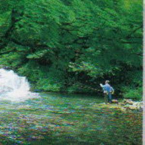 【渓流釣り】PaPaから車10~20分。渓流釣りの解禁期間は4月~9月頃。毎年、渓流釣り大会やこども渓流まつり等のイベントも行っています。